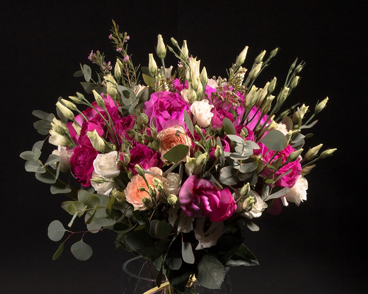 Доставка цветов Royal flowers